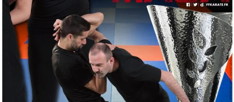 Open international Krav Maga le 2 Avril 2017  au Gymnase Léo LAGRANGE (Paris 12e)